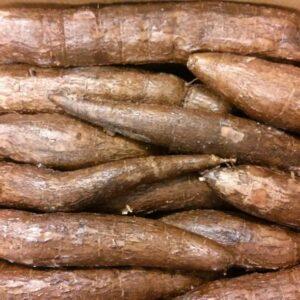 Fresh Cassava, Maniok, Mandioca 18kg Box