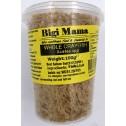 Dry small Crayfish Baby Schrimp whole Crevettes Sechees Majanga 100g