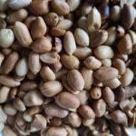 Roated Peanut Erdnüsse gesalzen geröstet Arachides grillées salées 265g